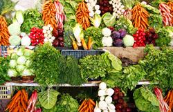 Начался прием заявок на получение грантов для начинающих фермеров Московской области.