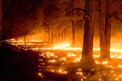 Меры безопасности перед началом пожароопасного периода.