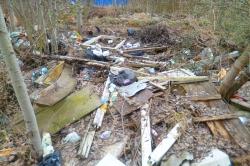 Госадмтехнадзор держит на контроле уборку мусора в поселке Истра Красногорского района.