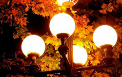 Витушева: За месяц устранены нарушения в содержании 120 участков наружного освещения.