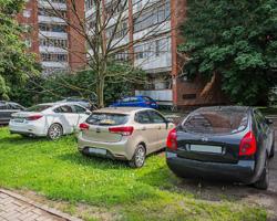 Витушева призвала муниципальные власти занять активную позицию в вопросах борьбы с несанкционированными парковками!