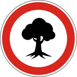 Опасность падения деревьев и веток в лесах и парках на территории Красногорска!