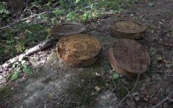 В Нахабино обнаружены мины советской эпохи!