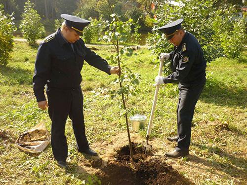 Баженов: Госадмтехнадзор примет самое активное участие в акции «Наш лес. Посади свое дерево».