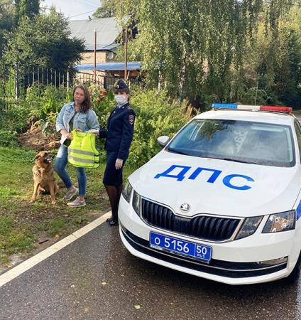 Инспектора ГИБДД Красногорска призвали владельцев домашних животных стать заметней на дороге!
